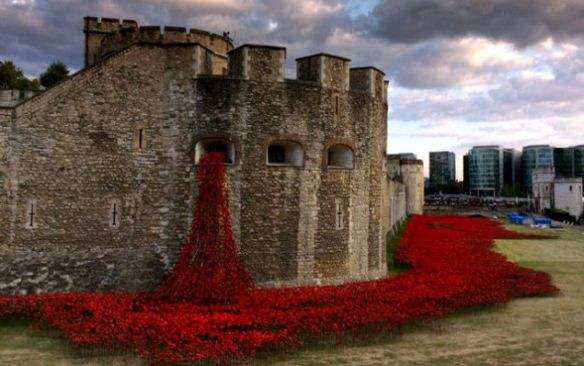 flood of poppies at the Tower of London